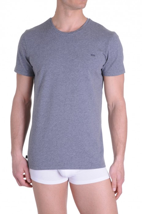 Diesel T-Shirt Randal Grijs