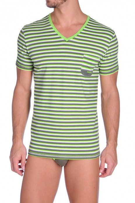 Diesel V-Shirt Michael Groen-Grijs