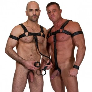 665 Leather - Neoprene Bulldog Harness Black